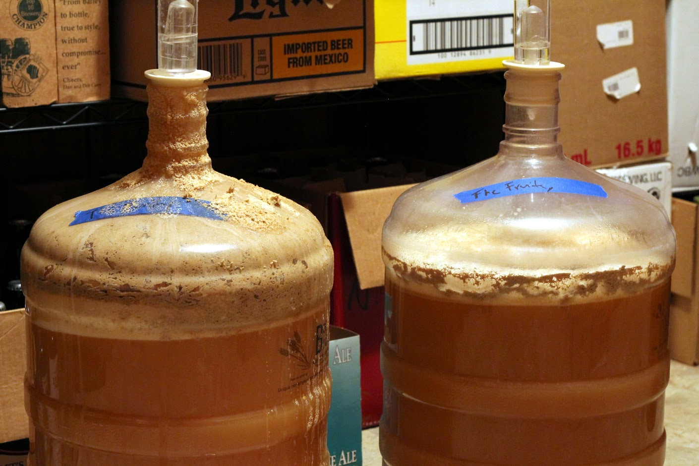 The Belgian yeast unsurprisingly was a little more active.