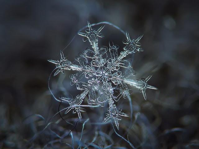 Amazing macro-photography of individual snowflakes [10 pics]