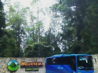 Bus Jogja Tujuan Wisata Mojosemi Forest Park, Magetan Jawa Timur