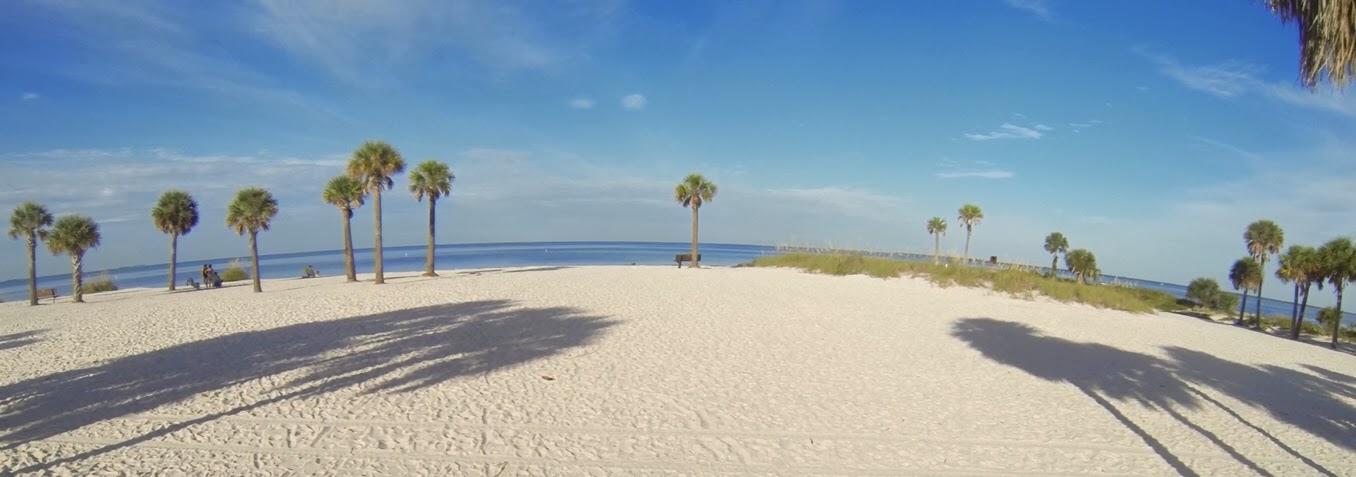 Strand, Palmen, Meer, blauer Himmel am Strand von Fred Howart in Tarpon Springs