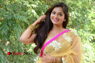 Ashwini Latest Pictures in Silver Golden Embroidery Saree at Telangana Film Chamber Press Meet ~ Celebs Next