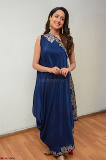 Pragya Jaiswal in beautiful Blue Gown Spicy Latest Pics February 2017 038.JPG