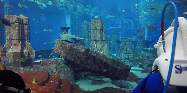 Sea TREK Atlantis Dubai