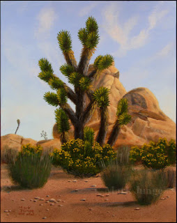 Joshua trees,Joshua Tree National Park,goldenbush,rock formation,monzogranite,flowers,blue sky