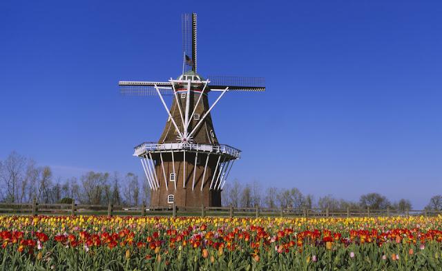 Голландия, Мичиган