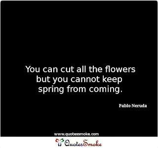 Pablo Neruda Life Quote