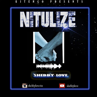 Audio Shebby Love – Nitulize Mp3 Download