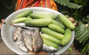 Village Food | Fish and cucumber curry