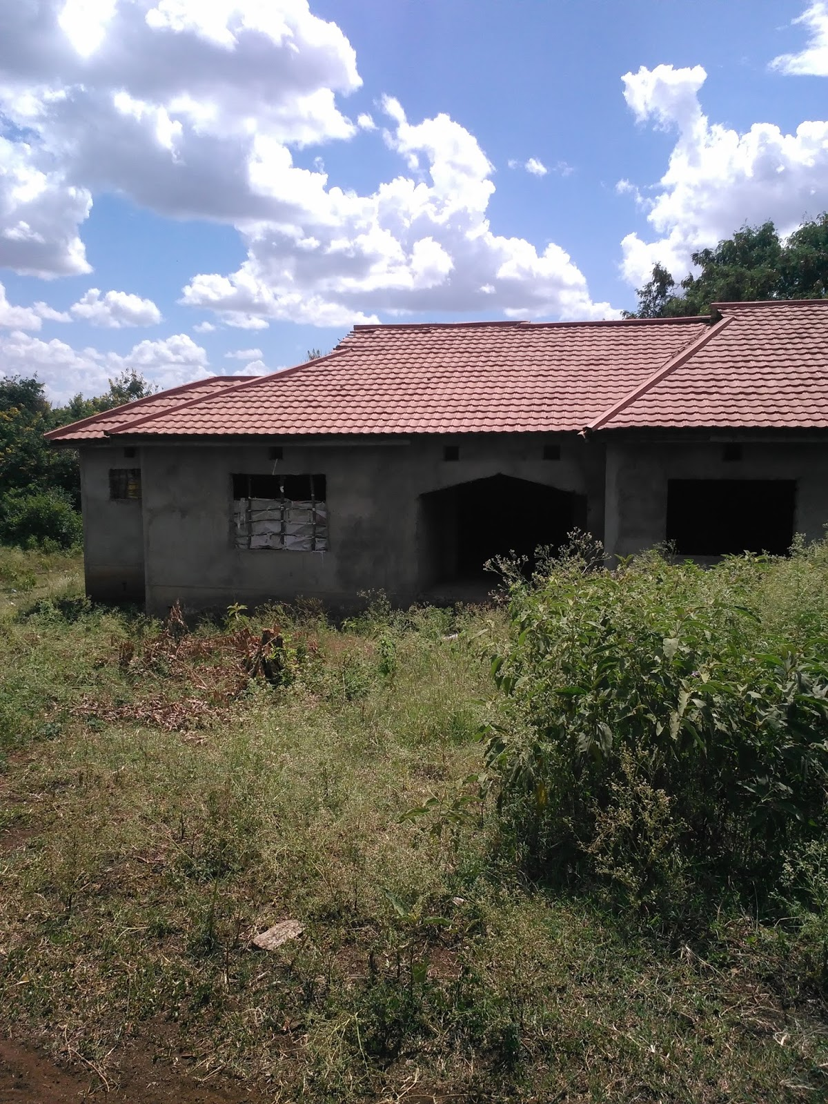 You Can Buy This House And Complete Building According To Your Interior Design Also Modify Outside Look Hence Finish Construction