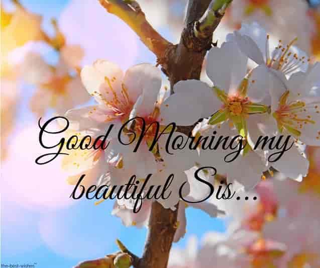 good morning my beautiful sis image