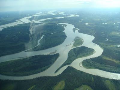 Rio Yukon anastomosado