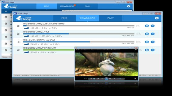 Vuze torrent screenshot 3