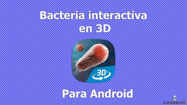 modelo 3d de celula procariota android