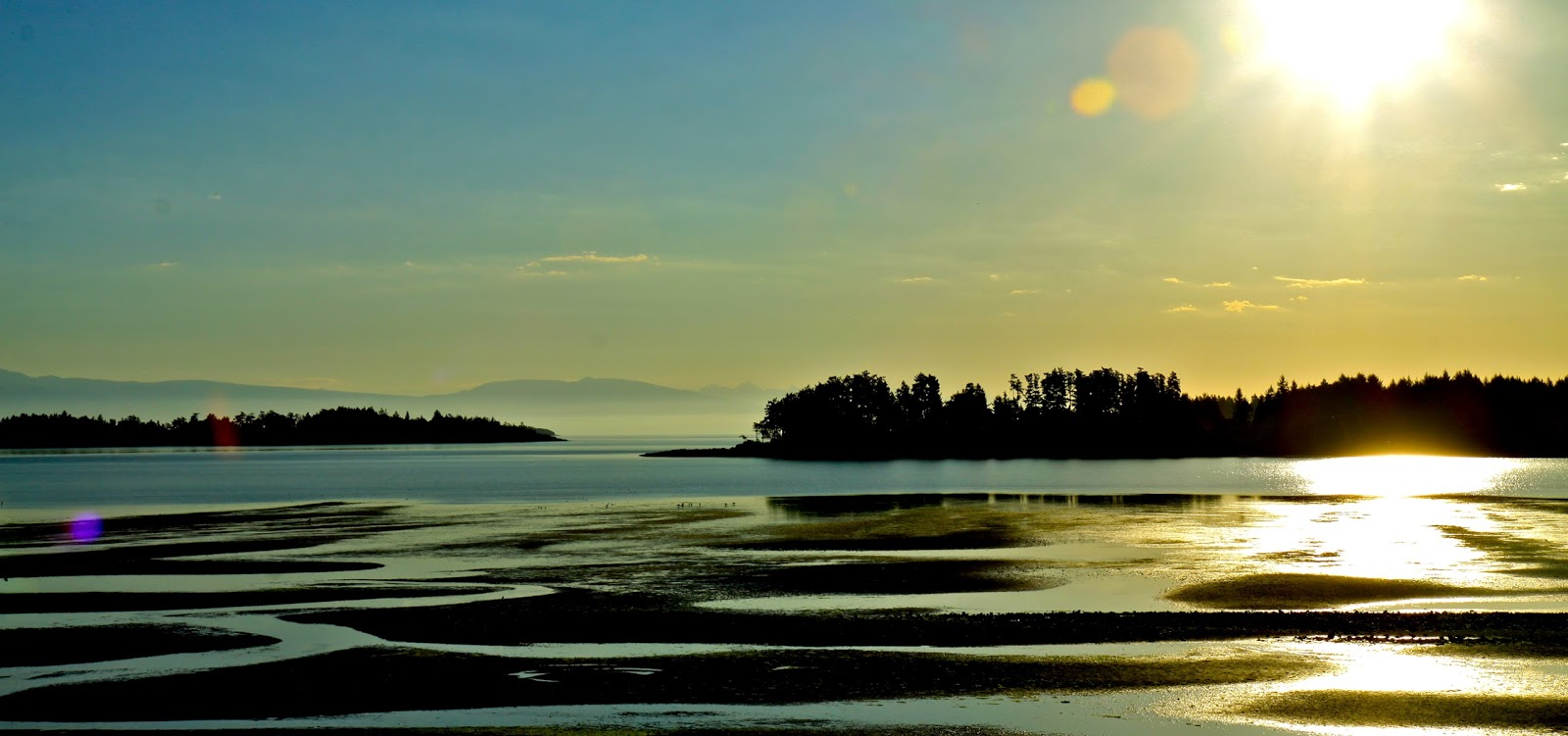 On My Toes Parksville Bc