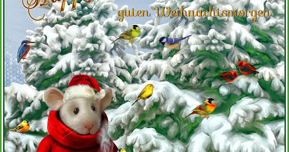 Eddas Träumereien: Einen schönen,guten Weihnachts-Morgen allen ...