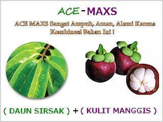 Obat khusus pria penderita buah pelir turun