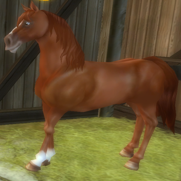 Star Stable Daily