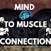 Mind to Muscle Connection - The Most Important Tip in Bodybuilding