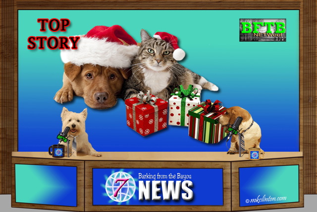 BFTB NETWoof News top story of dogs and cats gifts for Christmas