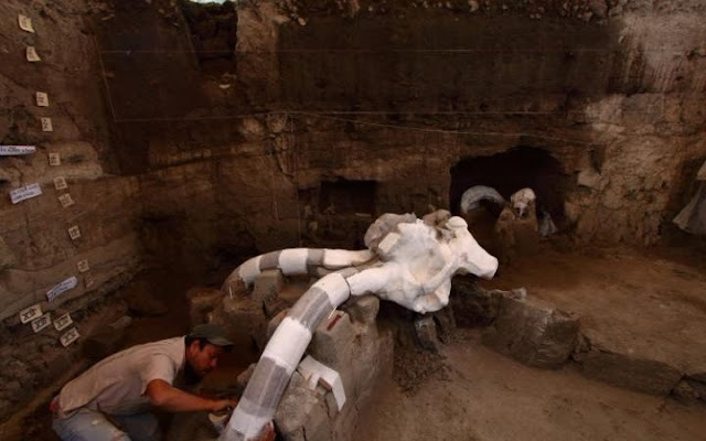 Remains of mammoth unearthed near Mexico City