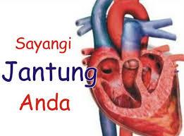 Pentingnya Menjaga Kesehatan Jantung