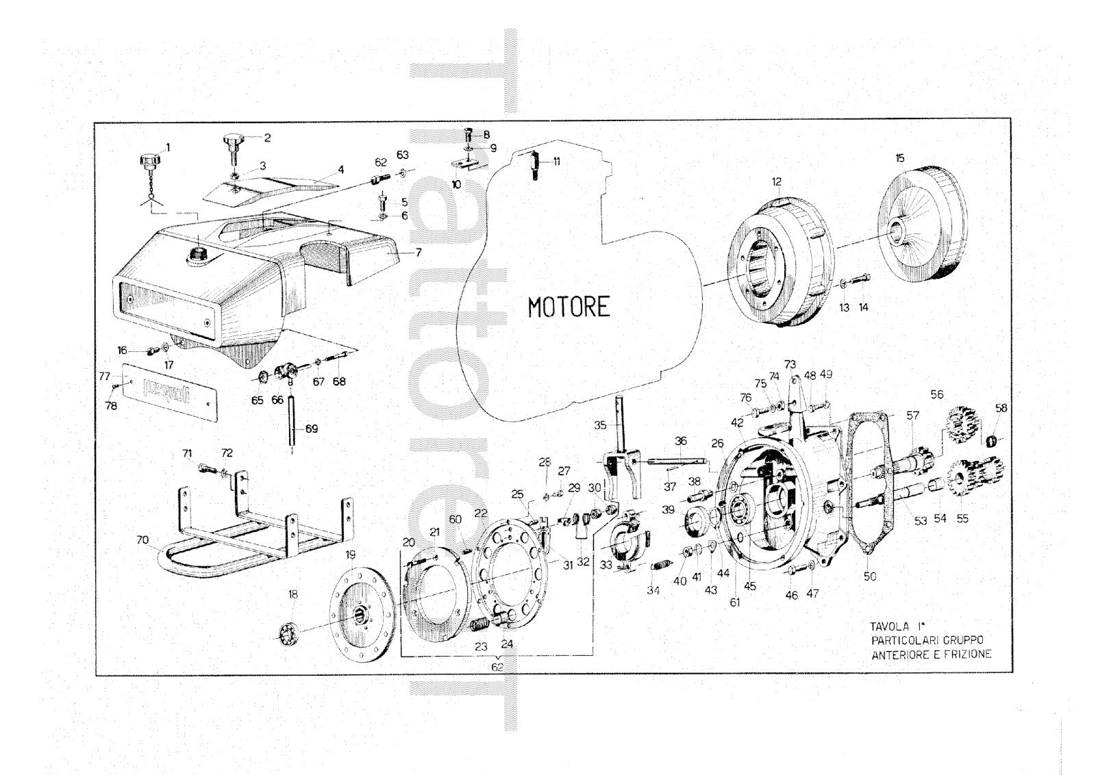 InfoTrattore.it: Motocoltivatore Pasquali 914 CV 13