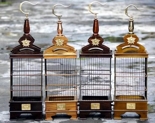 Kisaran Harga Sangkar Burung Pleci Untuk Lomba Saat Ini 2017 Terbaru Dan Paling Lengkap Kicau Mania