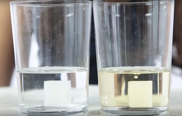 experimento, terrones, azucar, agua, aceite