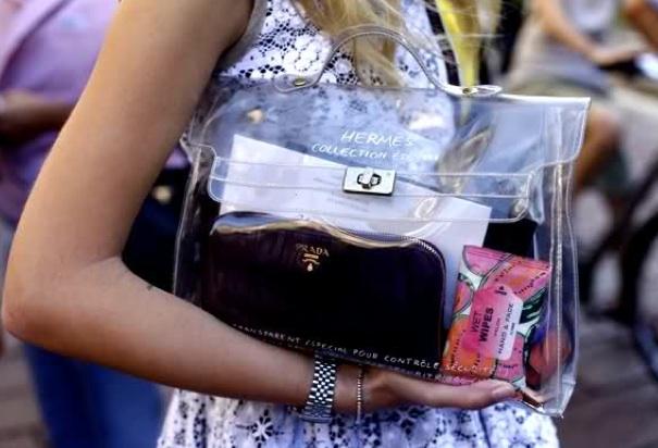 0dd5cd7e2 La Dentelle Blanche: See Through Bags
