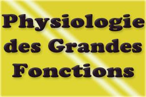 COURS physiologie des grandes fonctions