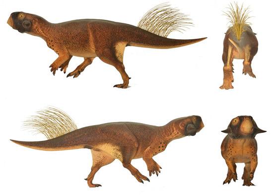 Laporan Penelitian Kamuflase Cretaceous, Pigrmentasi Psittacosaurus Lebur Cahaya dari Predator