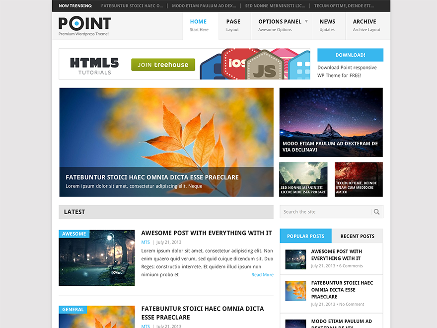 Point - free magazine WordPress theme