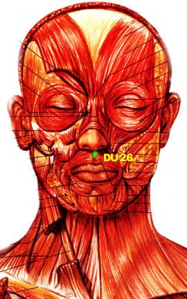 Resultado de imagen para 26 de vg punto acupuntura