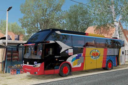 5 Skin Bus SR2 NRS