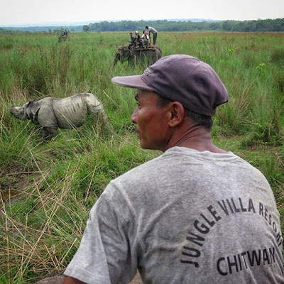 Safari en elefante para ver rinocerontes en Chitwan