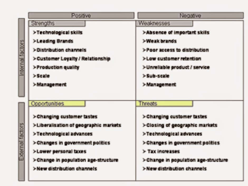 Information Swot Analysis