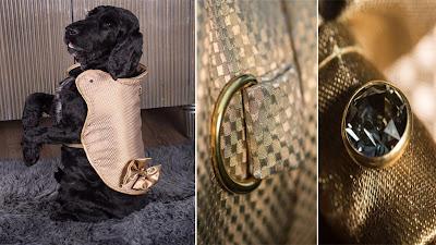 Inilah Jaket Anjing Termahal di Dunia Doggy Armour Dijual Seharga 1,8 Miliar Rupiah