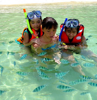 Things To Do In Kota Kinablu - Sapi Island, feeding the fish