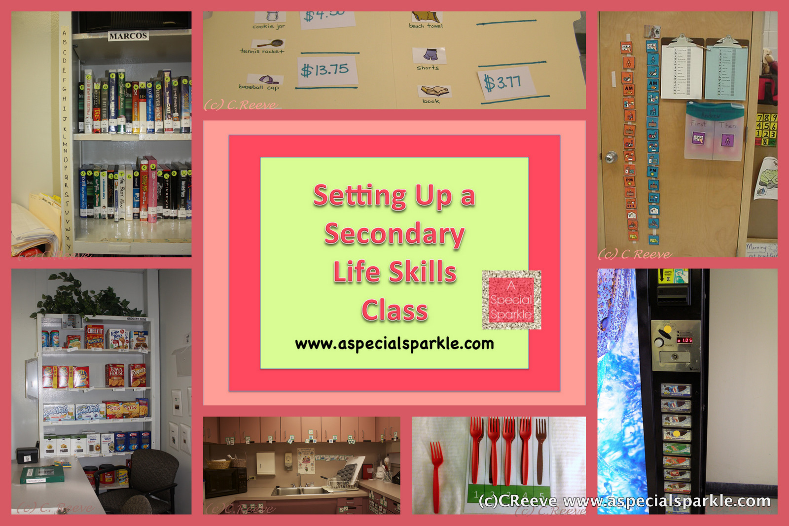 Workbooks transition worksheets for middle school : A Special Sparkle: Setting Up a Secondary Life Skills Class