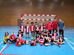 Club Handbol Vic