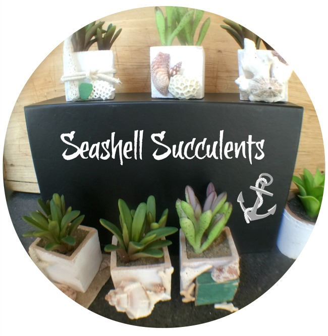 How to create beautiful seashell designs on store bought faux succulents. www.homeroad.net