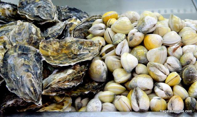 Frutos do mar na Ceasinha de Salvador: ostras e vôngoles