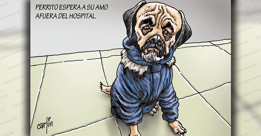 Carlincaturas Jueves 9 Julio 2020 - La República