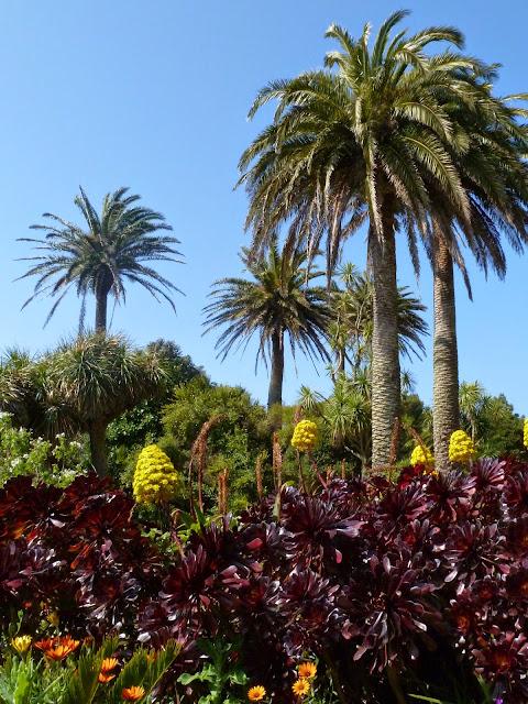 Abbey Gardens positively tropical