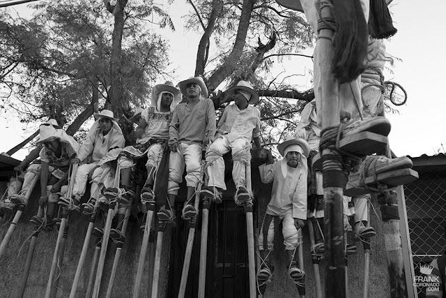 zancudos de zaachila Oaxaca