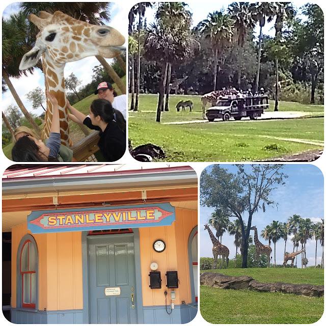 Safari no Busch Gardens