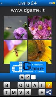 PACCHETTO 2 livello 24 - Soluzioni Trova la Parola - Foto Quiz con Immagini e Parole