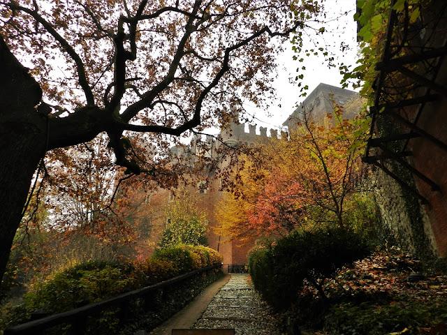 #AutumninTurin autunno a Torino