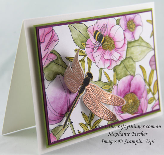#thecraftythinker, Stampin Up, Sale-A-Bration, Inside The Lines, Dragonfly Dreams, Sneak Peek, Stampin Up Australia Demonstrator, Stephanie Fischer, Sydney NSW
