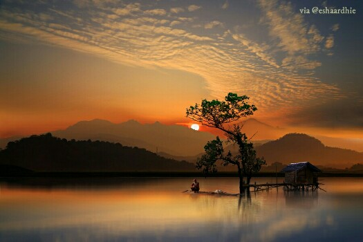 Kebun Sunset Fotografi